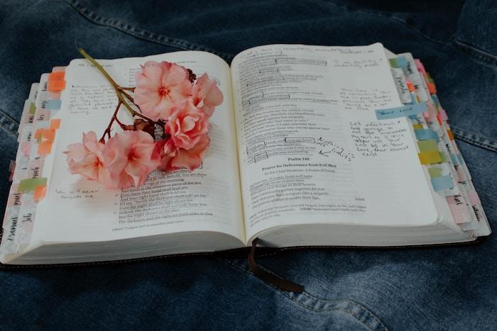 理学療法士に合格した私の勉強方法と内容